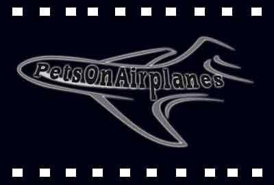 Pets On Airplanes – Pet Airline Videos