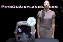 CARGO – Pet Travel Videos